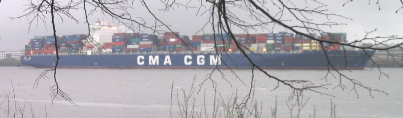 cmacgmcontainerschiffkleinzweige.jpg